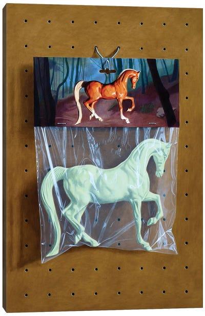 Ghost Horse Bag Canvas Art Print
