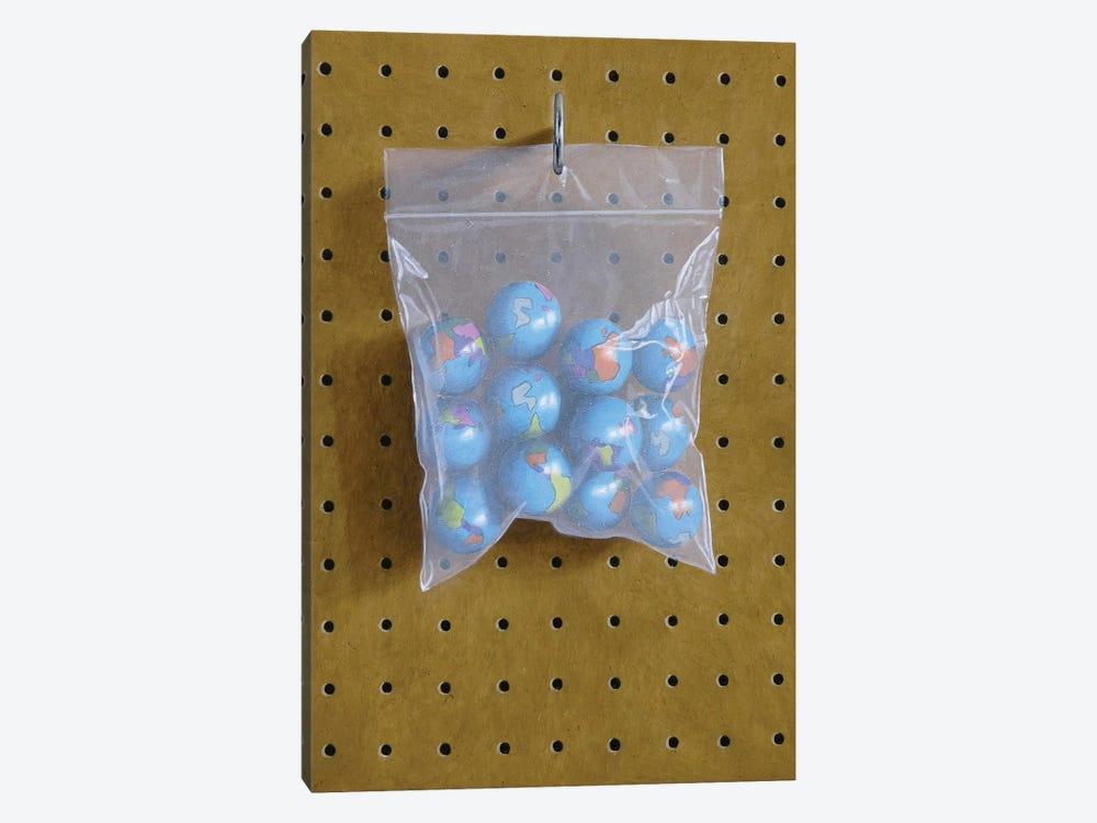 Globe Bag by Simon Monk 1-piece Canvas Wall Art