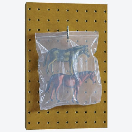Horse Bag Canvas Print #SMN18} by Simon Monk Art Print
