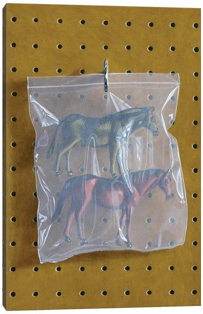 Horse Bag Canvas Art Print