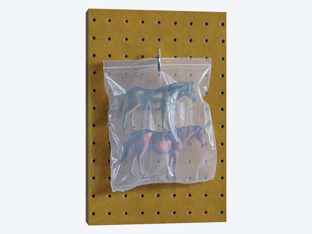 Horse Bag by Simon Monk 1-piece Canvas Print