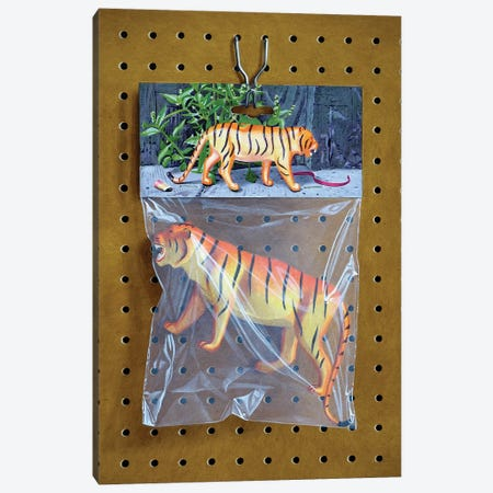Animal Bag No. 1 3-Piece Canvas #SMN2} by Simon Monk Canvas Art Print
