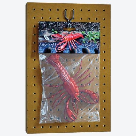 Animal Bag No. 2 Canvas Print #SMN3} by Simon Monk Art Print
