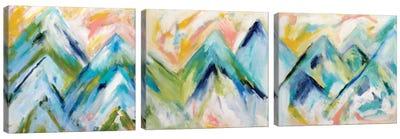 Denver Surprise Triptych Canvas Art Print