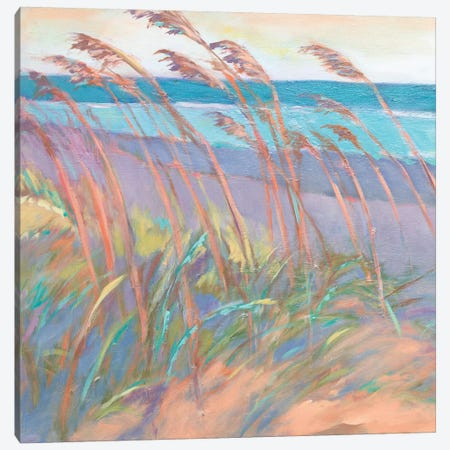 Dunes At Dusk I Canvas Print #SMW12} by Suzanne Wilkins Canvas Artwork