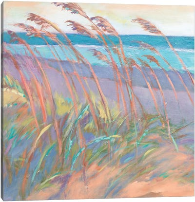 Dunes At Dusk I Canvas Art Print