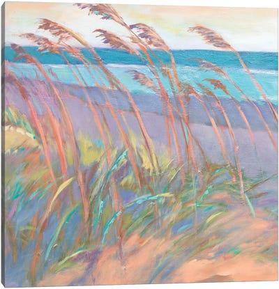 Dunes At Dusk I Canvas Art Print