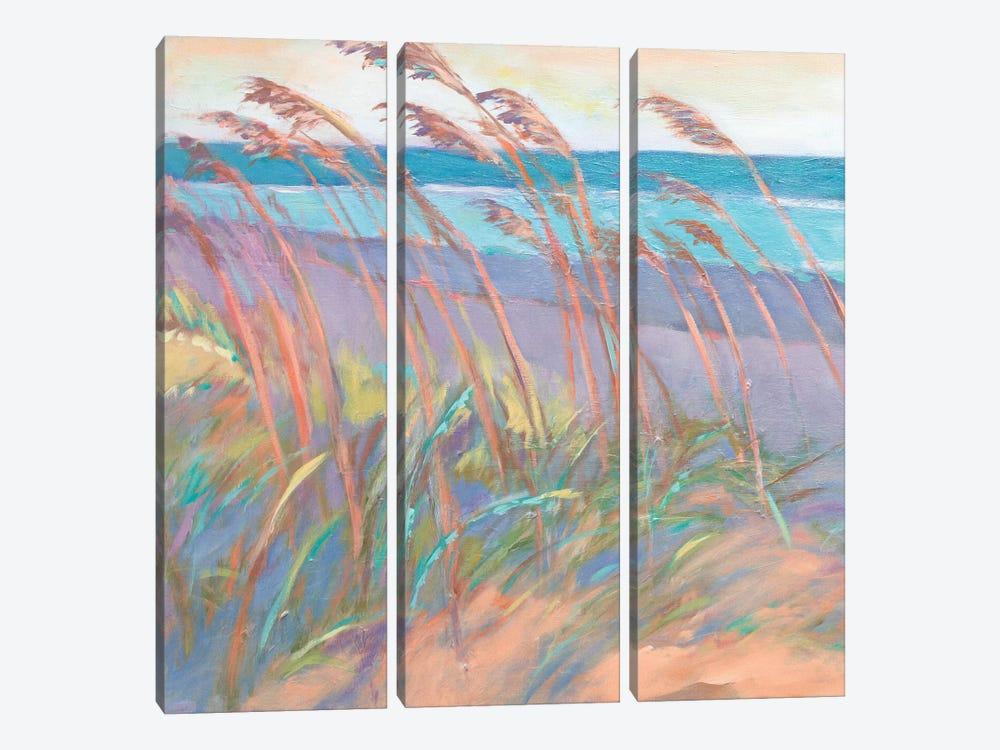 Dunes At Dusk I by Suzanne Wilkins 3-piece Canvas Artwork