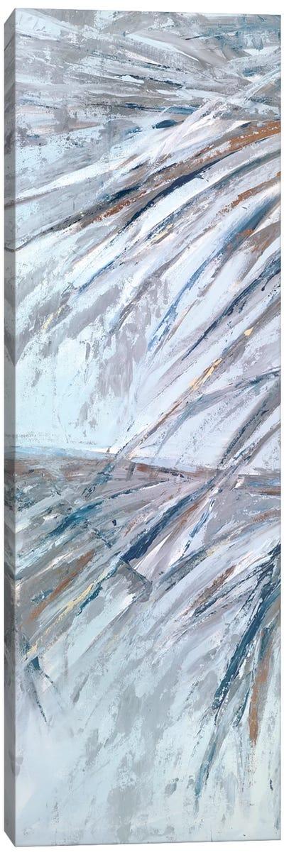 Grey Palms III Canvas Art Print