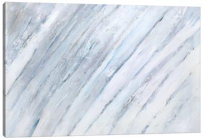 Soft Fronds I Canvas Art Print