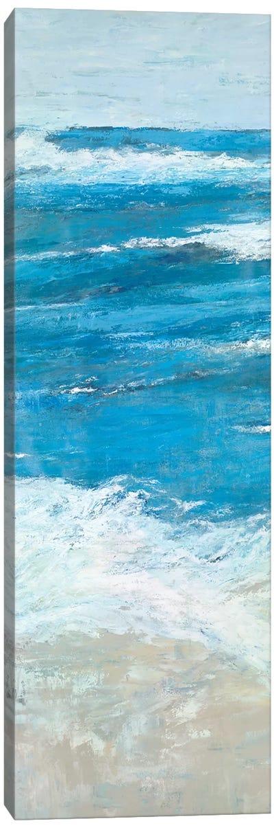 The Shoals Canvas Art Print