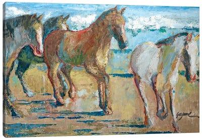 Caballos en la Playa Canvas Art Print