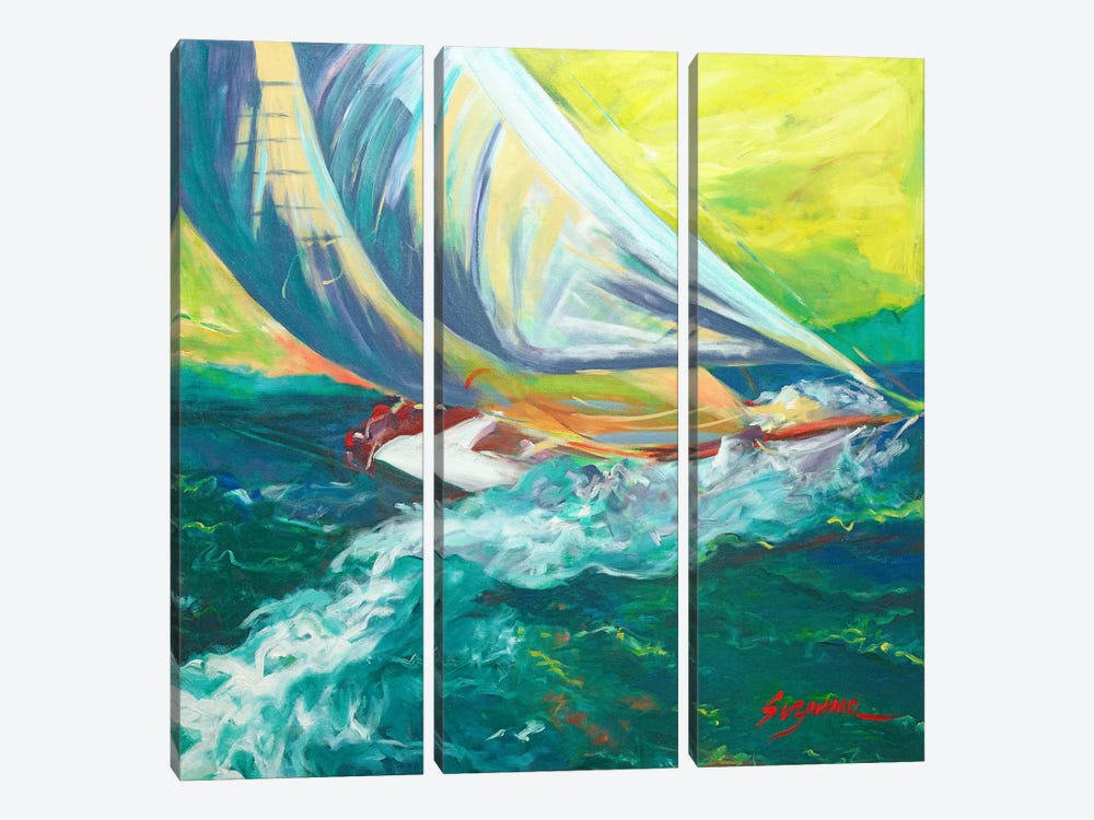 Regatta Colores by Suzanne Wilkins 3-piece Canvas Print
