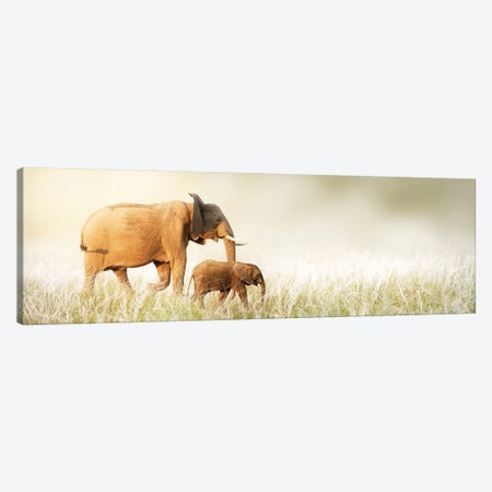 Mom And Baby Elephant Walking Through Tall Grass Canvas Print #SMZ100} by Susan Schmitz Canvas Print