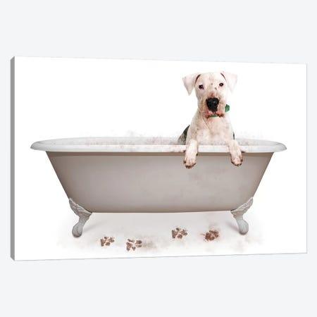 Muddy Dog In Bath Tub 3-Piece Canvas #SMZ107} by Susan Schmitz Canvas Artwork