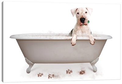 Muddy Dog In Bath Tub Canvas Art Print