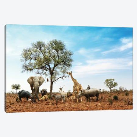 African Safari Animals Meeting Together Around Tree II Canvas Print #SMZ10} by Susan Schmitz Art Print