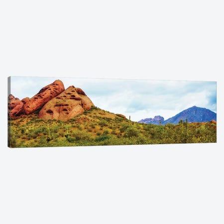 Papago Park Phoenix Arizona Horizontal Banner Canvas Print #SMZ113} by Susan Schmitz Canvas Art