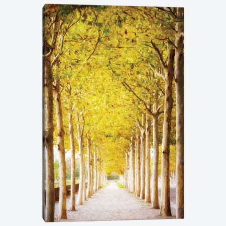 Pathway Lined With Trees Artistic Painting II Canvas Print #SMZ114} by Susan Schmitz Art Print