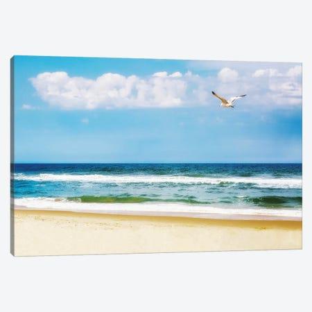 Peaceful Beach With Seagull Soaring II Canvas Print #SMZ115} by Susan Schmitz Canvas Print