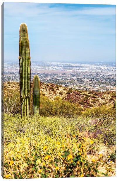 Phoenix Arizona Desert With Saguaro Cactus And Cityscape Canvas Art Print
