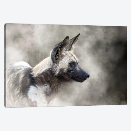 African Wild Dog In The Dust Canvas Print #SMZ11} by Susan Schmitz Canvas Art Print