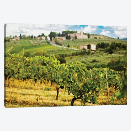 Rows Of Grapes In Tuscany Italy Vineyard Canvas Print #SMZ136} by Susan Schmitz Art Print