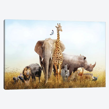 Safari Animals In Africa Composite 3-Piece Canvas #SMZ137} by Susan Schmitz Canvas Print