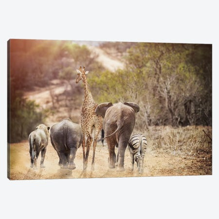 Safari Animals Walking Away Down Path Canvas Print #SMZ138} by Susan Schmitz Canvas Artwork