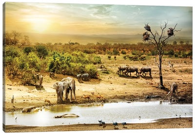 South African Safari Wildlife Fantasy Scene II Canvas Art Print