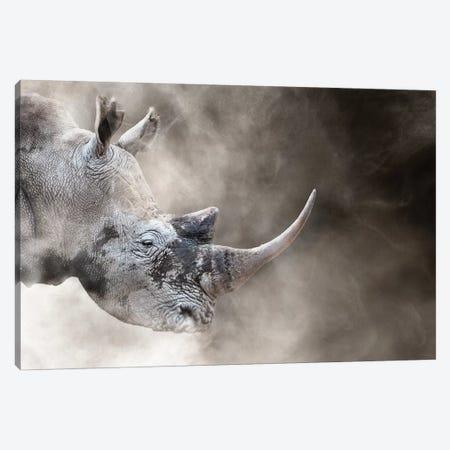 Southern White Rhino In The Dust Canvas Print #SMZ146} by Susan Schmitz Canvas Artwork