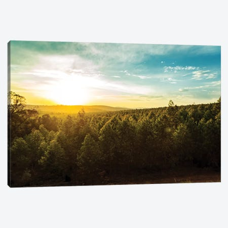 Sunset Over Trees And Hills In South Africa Canvas Print #SMZ156} by Susan Schmitz Canvas Print