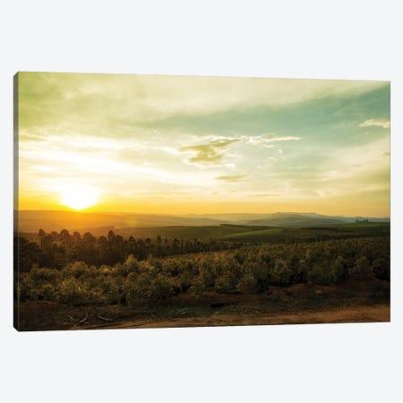 Sunset Over Valley In Mpumalanga South Africa Canvas Print #SMZ157} by Susan Schmitz Art Print