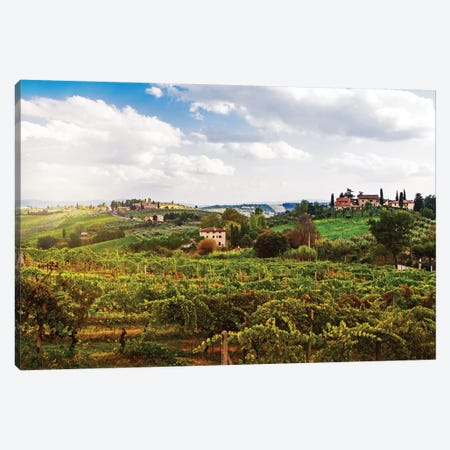 Tuscany Italy Vineyard And Countryside Canvas Print #SMZ161} by Susan Schmitz Canvas Print