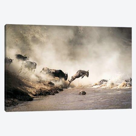 Wildebeest Leaping In Mid-Air Over Mara River 3-Piece Canvas #SMZ183} by Susan Schmitz Canvas Print