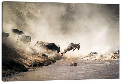 Wildebeest Leaping In Mid-Air Over Mara River Canvas Art Print