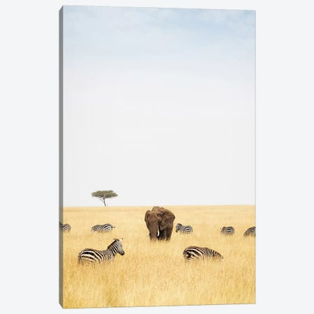 Zebra And Elephants In Kenya - Vertical Canvas Print #SMZ187} by Susan Schmitz Canvas Wall Art