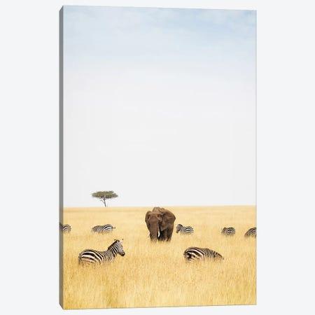 Zebra And Elephants In Kenya - Vertical 3-Piece Canvas #SMZ187} by Susan Schmitz Canvas Wall Art