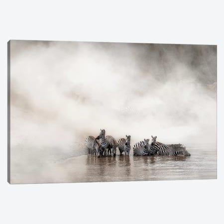 Zebra Drinking In The Mara 3-Piece Canvas #SMZ188} by Susan Schmitz Canvas Print