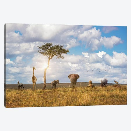 Safari Animals Looking Out Over The Land Canvas Print #SMZ193} by Susan Schmitz Canvas Art