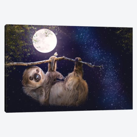 Cute Sloth Hanging On A Branch In Evening Canvas Print #SMZ195} by Susan Schmitz Canvas Art Print