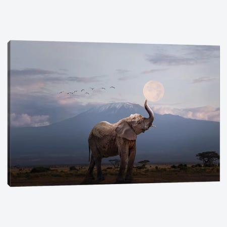Elephant Holding Up Moon In Africa 3-Piece Canvas #SMZ196} by Susan Schmitz Art Print