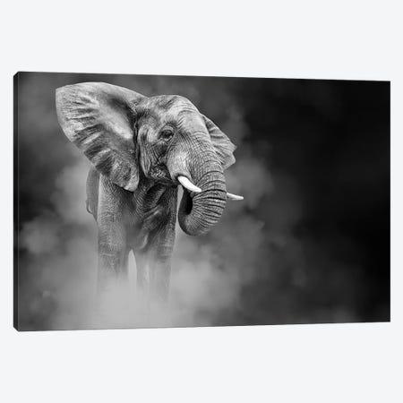 Large African Elephant In The Dust Canvas Print #SMZ212} by Susan Schmitz Canvas Art Print