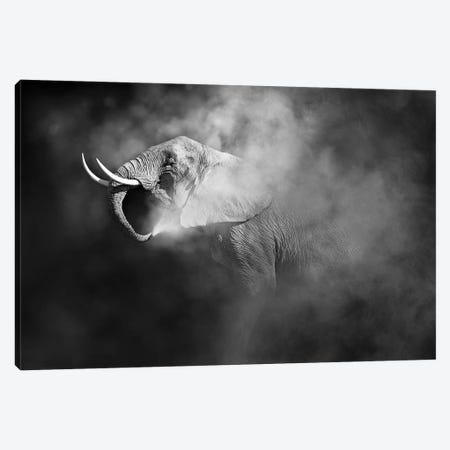 African Elephant Blowing Dust Canvas Print #SMZ213} by Susan Schmitz Canvas Print