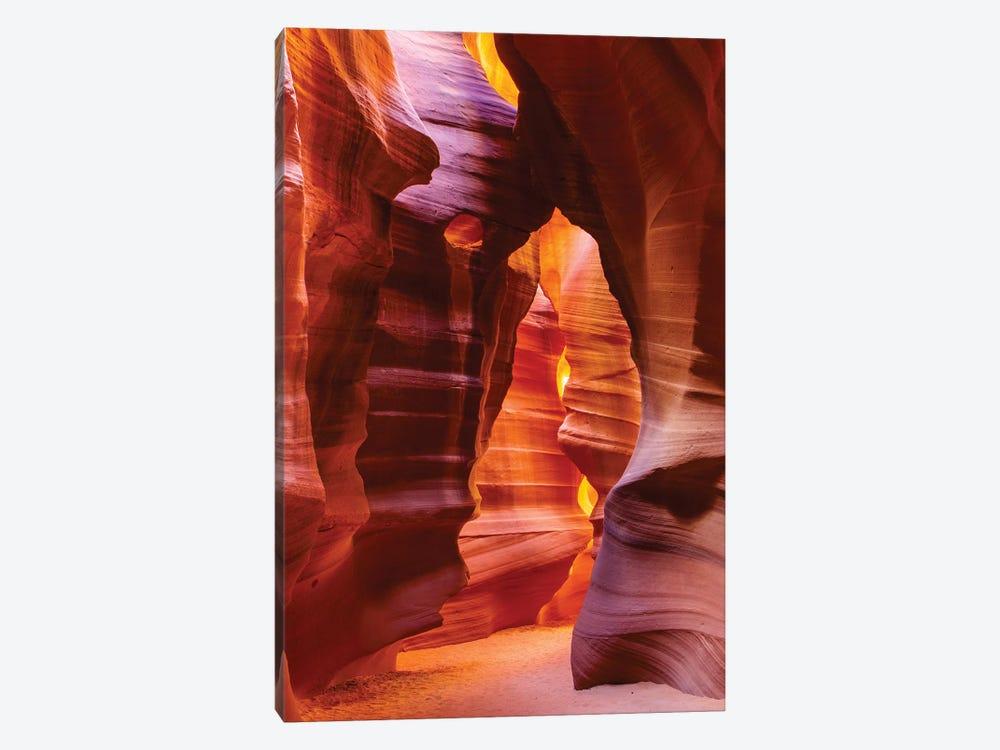 Bear Shape In Antelope Canyon by Susan Schmitz 1-piece Canvas Artwork