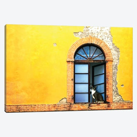 Cat In Window Of Old Building Canvas Print #SMZ35} by Susan Schmitz Canvas Artwork