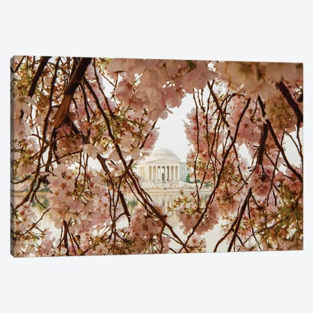 Cherry Blossom Flowers In Washington Dc Canvas Print #SMZ37} by Susan Schmitz Canvas Artwork