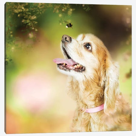 Cocker Spaniel Dog With Bee In Flowers 3-Piece Canvas #SMZ47} by Susan Schmitz Canvas Print