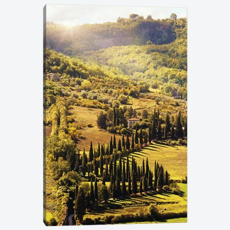 Countryside In Tuscany Italy With Cyprus Trees Canvas Print #SMZ50} by Susan Schmitz Art Print