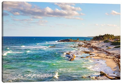 Cozumel Mexico Carribean Sea Shoreline Canvas Art Print